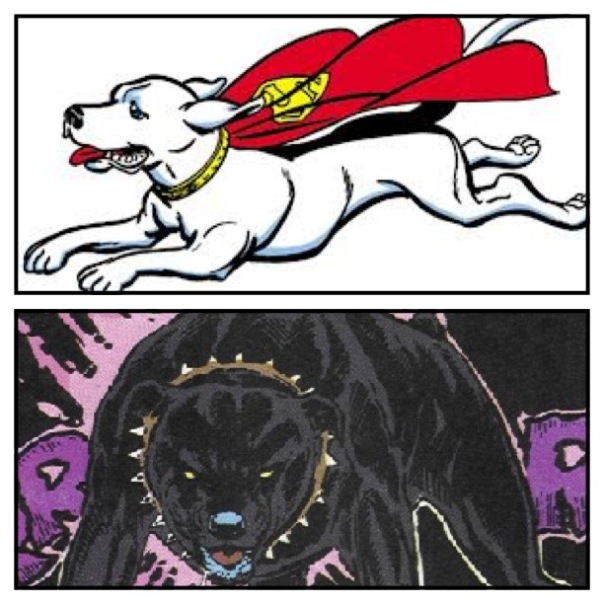 Krypto vs. Max